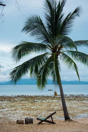 lounge chair: beach chair under coconut tree Stock Photo