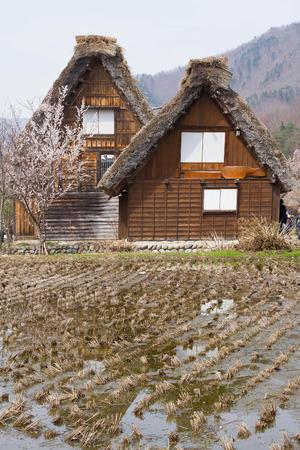 Old Japanese village, Shirakawago Editorial