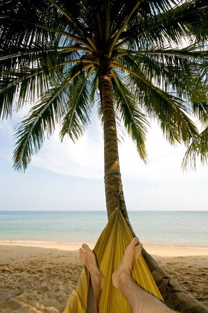 Relaxing in a hammock under palm trees at the beach photo