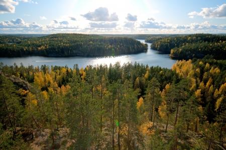 woods lake: Vista sulla foresta in colori autunnali a livello nazionale Repovesi parco in Finlandia
