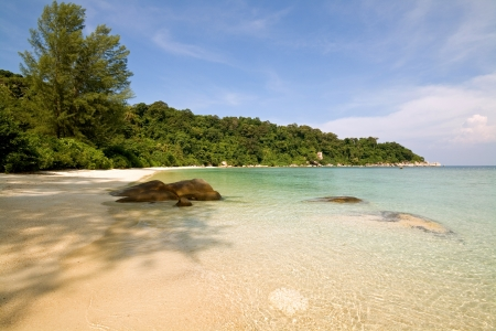 Lush forest and unoccupied beach in Malaysia Stock Photo - 17569763