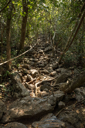 angthong: Rocky trail going upwards in the shade of trees at the Wua Talap Island at the Ang Thong (Angthong) National Marine Park in Thailand