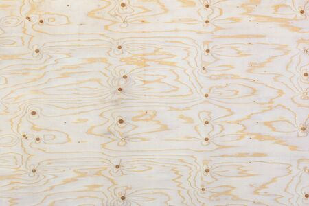 ply: Blank plywood texture background