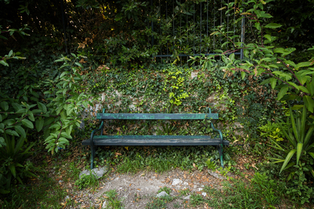 unoccupied: Unoccupied old green bench surrounded by plants and foliage. Concept photo of solitude and anxiety. Stock Photo