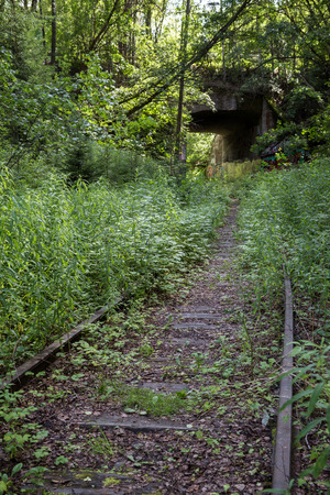 forest railroad: Old and obsolete railroad track and tunnel at a forest in Finland in the summer. Stock Photo