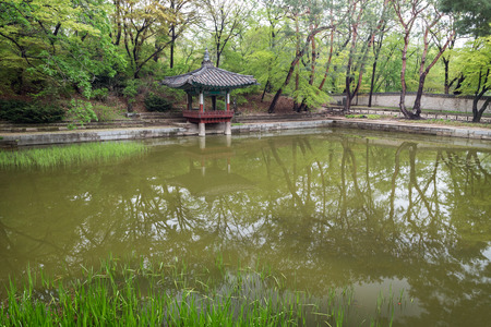 Aeryeonji Pond at Huwon (Secret Garden) at the Changdeokgung Palace in Seoul, South Korea. Editorial