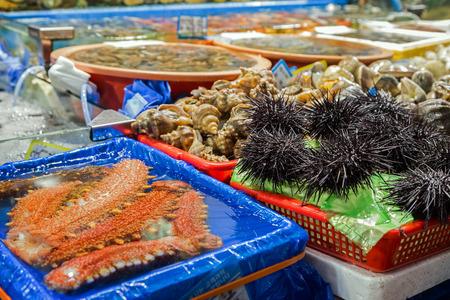 fischerei: Seegurken, Seeigel und andere Meeresfrüchte an der in Seoul, Südkorea (oder Noryangjin Fischmarkt) Noryangjin Fischerei Großmarkt verkauft werden. Lizenzfreie Bilder
