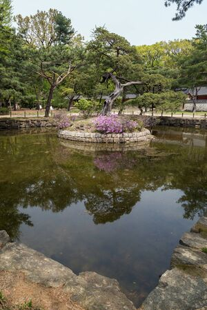 View of a pond and trees at the Jongmyo Shrine in Seoul, South Korea.