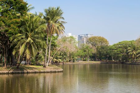 lumpini: View of palm trees and lake at the Lumpini (Lumphini) Park in Bangkok, Thailand.