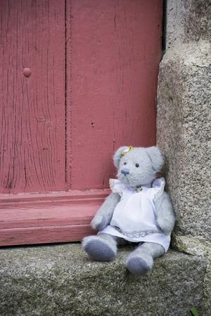 ices: Teddy bear alone