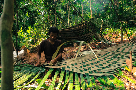 peacefully: PATTHALUNG, THAILAND - DEC 13 , 2015 : The Negrito of Thailand. They are a saa-gai tribe who live peacefully in the dense and impenetrable forest. In the south of Thailand.