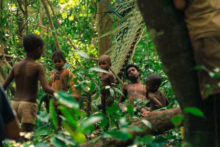 impenetrable: PATTHALUNG, THAILAND - DEC 13 , 2015 : The Negrito of Thailand. They are a saa-gai tribe who live peacefully in the dense and impenetrable forest. In the south of Thailand.