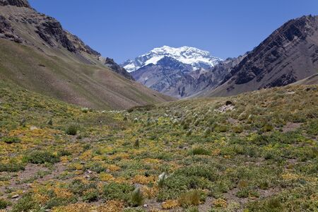 aconcagua: Aconcagua valley with the Aconcagua at the back, Argentinian Andes Stock Photo