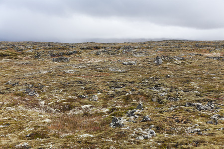 volcanic landscape: Isolated volcanic landscape at snaefellsnes peninsula, Iceland.