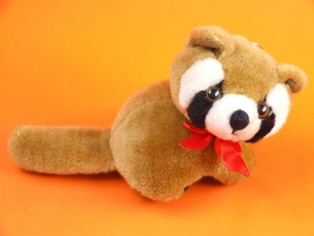 Cute cuddly brown raccoon toy Stock Photo - 641884