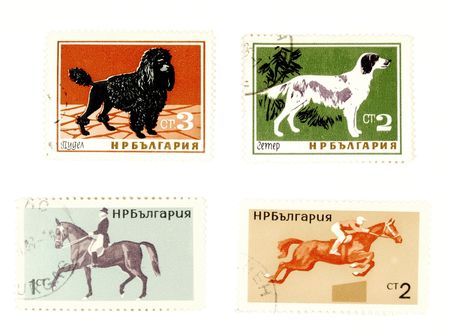 collectible: Collectible stamps from Poland. Set with dogs and horses.