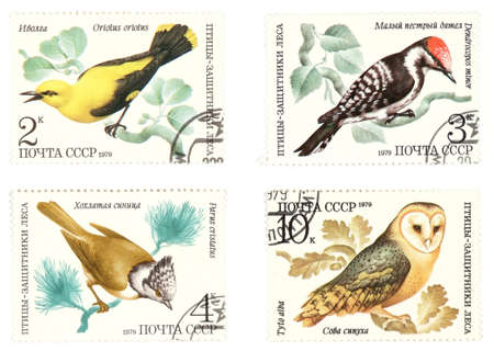 collectible: Collectible stamps from Soviet union. Set with birds.