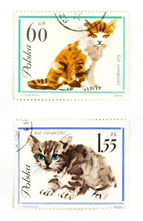 recoger: Sellos de colección de Polonia. Set con los gatos. Foto de archivo