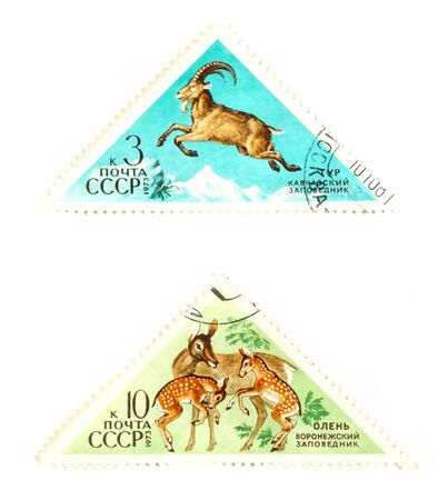 collectible: Collectible stamps from USSR. Set with wild animals. Stock Photo