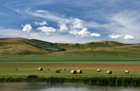 america countryside: Prairie landscape of Canada. Pastures and meadows of Alberta. Stock Photo