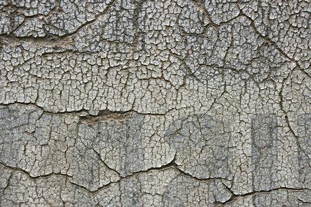 Vintage peeling paint on an old wall. Urban texture. Stock Photo - 3594602