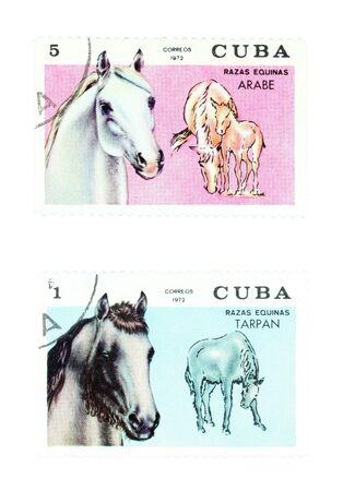 arabe: Colecci�n de sellos de Cuba. Set con los caballos: y arabe TARPAN. Foto de archivo