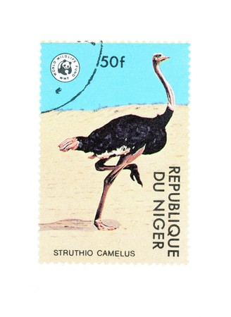 struthio camelus: Collectible stamp from Niger. Stamp with ostrich (Struthio camelus).