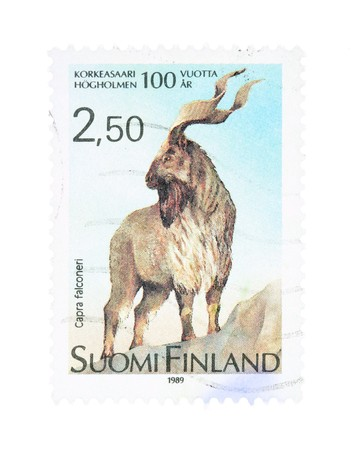collectible: Collectible old stamp from Finland. Stamp with Markhor goat-antelope (capra falconeri).
