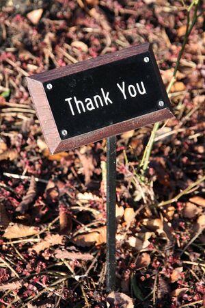 agradecimiento: GRACIAS mensaje en un tablero en el suelo Foto de archivo