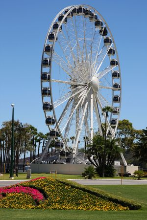 observation wheel: Observation wheel in Perth foreshore. Landmark of Western Australia, built in 2008. Stock Photo