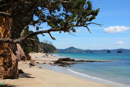 australasia: Hahei Beach in Coromandel peninsula. New Zealand - North Island.