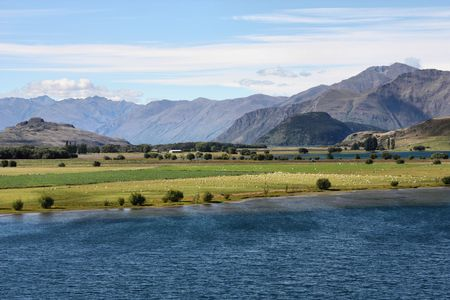 Glendhu Bay of Lake Wanaka in New Zealand. Beautiful mountain landscape and green meadows dotted with white sheep. photo