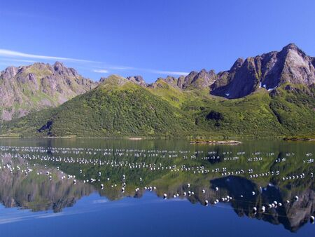 buoys: Beautiful mountains and their reflection in still, clear water. Oyster farm buoys. Lofoten islands, Norway. Stock Photo