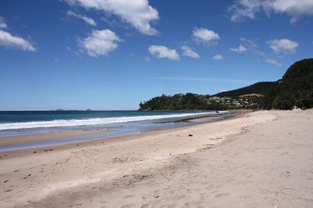 warm water: Hot Water Beach in Coromandel schiereiland. Nieuw-Zeeland - North Island. Stockfoto
