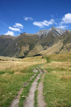 aspiring: Mountains and tourist trail in Mount Aspiring National Park, New Zealand
