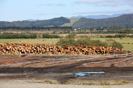 lumber mill: Scenic view in New Zealands Canterbury region. South Island mountains. Hills and lumber mill.