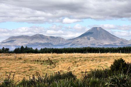 tongariro national park: New Zealand - famous volcano Ngauruhoe in Tongariro National Park
