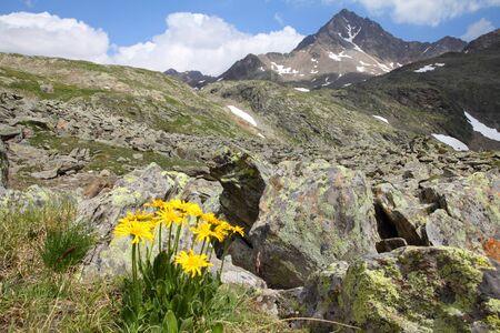 gavia: Italy, Stelvio National Park. Near Gavia Pass in Ortler Alps. Alpine landscape. In background: Corno dei Tre Signori peak, 3360m high.