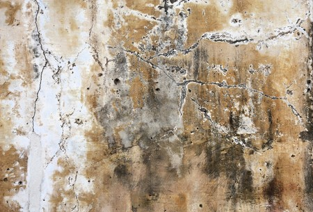 Grungy background texture with peeling paint. Old architecture abstract. Stock Photo - 7504838