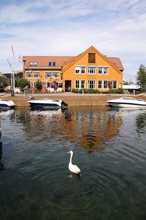 kristiansand: Kristiansand, Norway. Capital of Vest-Agder county. White swan in the harbor.