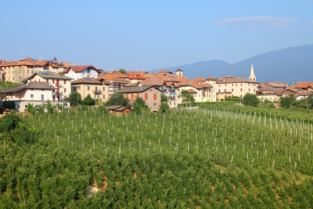 Revo town and apple orchards in Val di Non - valley in province of Trento, Italy. Trentino region. photo