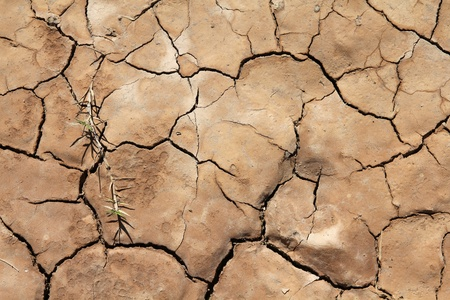 greenhouse effect: Greenhouse effect and global warming - dry cracked soil in Cuba