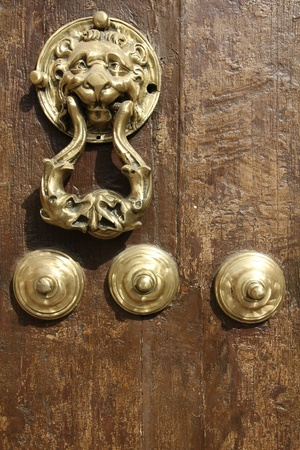 Lion door knocker. Antequera in Andalusia region of Spain. photo