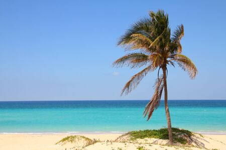 Cuba - Caribbean beach Playa Megano in Playas del Este part of Havana Province. Sandy coast. photo