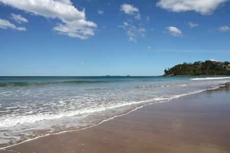 new zealand beach: Hot Water Beach in Coromandel peninsula. New Zealand - North Island. Sandy bay. Stock Photo