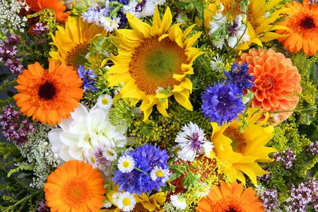 mainz: Colorful flowers composition at a marketplace in Mainz, Germany