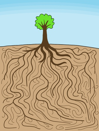 Doodle illustration - tree with gigantic root system. Nature complexity. Stock Vector - 10443185