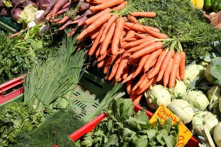 campesino: Stand de verdura en un mercado en Mainz, Alemania. Mercado de agricultores.