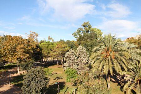 Trees In Famous Turia Gardens. Photo