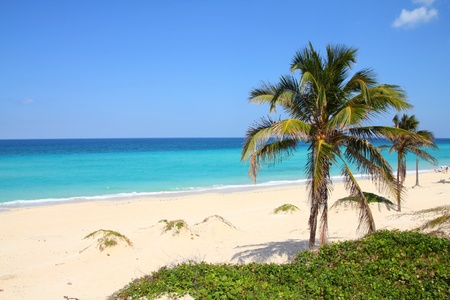 Cuba - Caribbean beach Playa Megano in Playas del Este part of Havana Province. Sandy coast. photo
